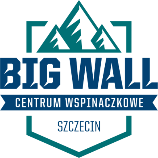 cropped-bigwall_banner_logo.png